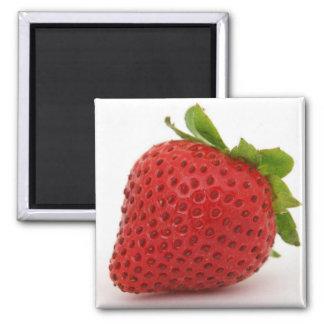 Decoración del imán de la fresa