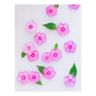 decoración floral hermosa postal