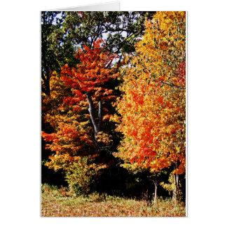 Decoraciones de la caída de la naturaleza tarjeta