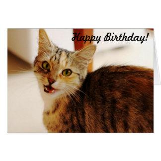 ¡Deje este gato desear un feliz cumpleaños! Tarjeta De Felicitación