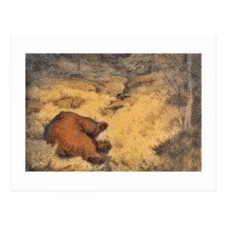 """""""Deje la mentira de los osos el dormir """" Postal"""