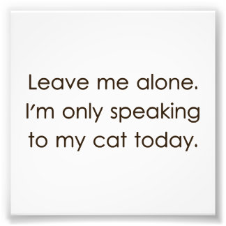 Déjeme me solo están hablando solamente a mi gato fotografia