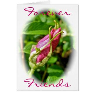 Del capullo de rosa tarjeta de los amigos para sie