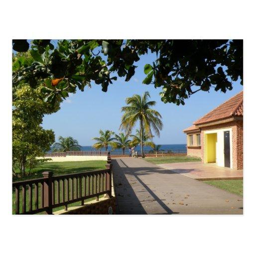 Del Faro Rincon de Parque Tarjeta Postal
