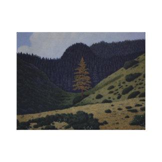 Del Norte Pine Impresión De Lienzo