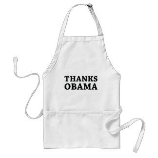 Delantal Gracias Obama