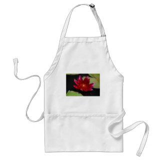 Delantal Lotus magenta Waterlily