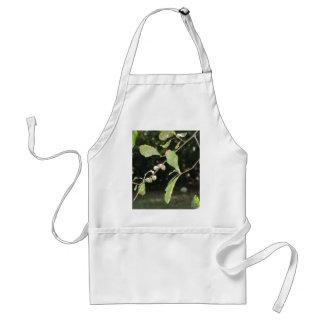 Delantal Poca bellota verde