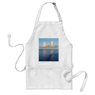 Delantal Reflexiones de la nube del paisaje marino de la