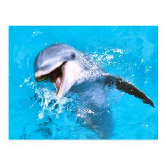 Delfín 2 sonrientes postal
