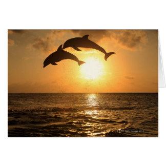 Delfin 3 tarjeta de felicitación