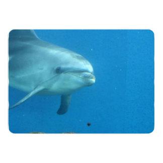Delfín adorable invitación 12,7 x 17,8 cm