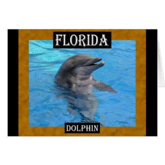 Delfín de la Florida Tarjeta De Felicitación