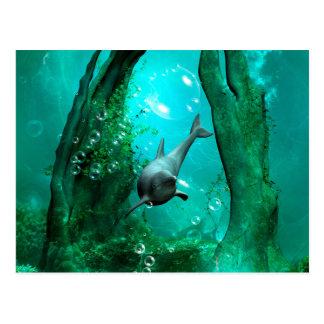 Delfín de la natación en un mundo de fantasía postal