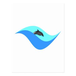 Delfín dolphin postales
