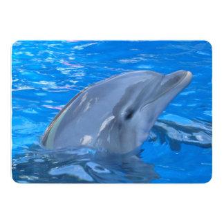 Delfín Comunicados Personales
