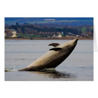 Delfín que se divierte tarjeta de felicitación