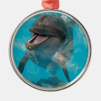 Delfín sonriente adorno navideño redondo de metal