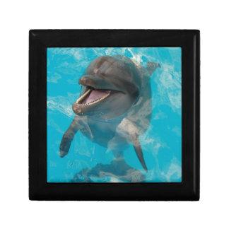 Delfín sonriente cajas de joyas