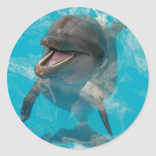 Delfín sonriente pegatina redonda