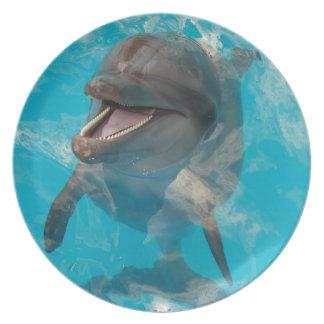 Delfín sonriente platos de comidas