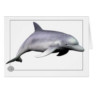Delfín Tarjeta