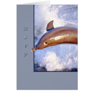 Delfín Felicitacion
