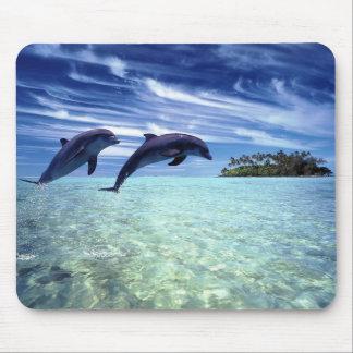 Delfínes a montones alfombrilla de ratón