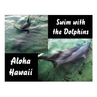 Delfínes de Hawaii Postal