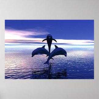 Delfínes de la madrugada póster