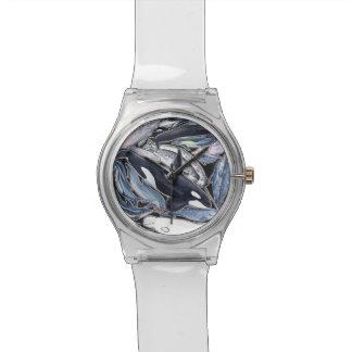 Delfines, orcas, belugas y narvales reloj