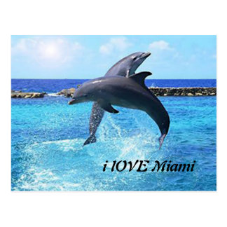 Delfínes que juegan en el océano postal