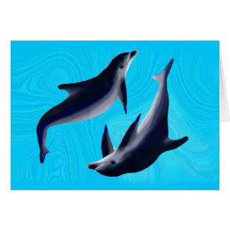 Delfines Tarjetón