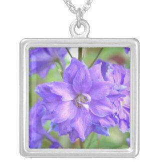Delphinium bonito grimpola personalizada