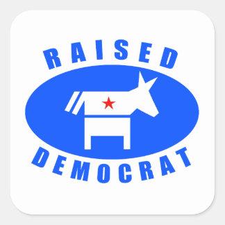 Demócrata criado pegatinas cuadradas