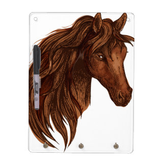 Deporte del caballo de los caballos pizarra blanca