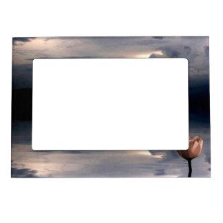 Deriva de luces marcos magneticos de fotos