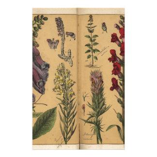 DES Pflanzenreichs, Eßlingen 1870 de Papelería De Diseño
