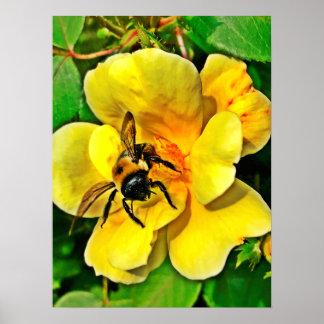 Desafío de la abeja póster