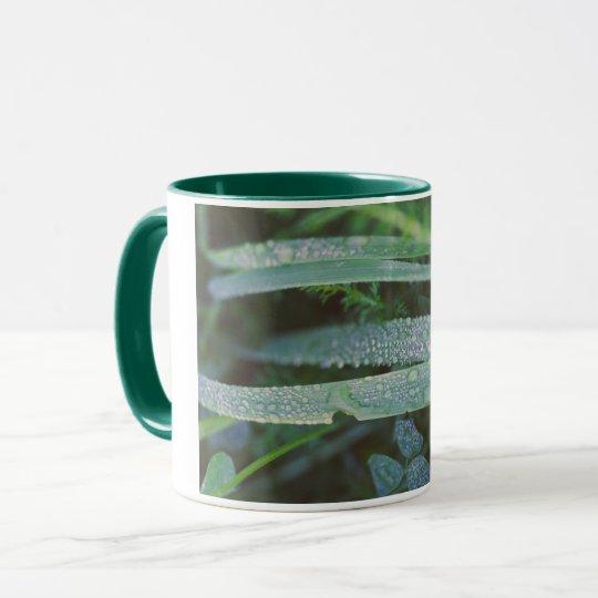 Descensos de rocío en la hierba taza