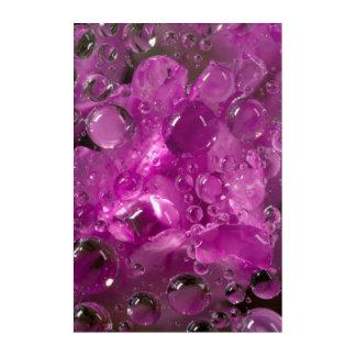 Descensos del agua en la flor, California Impresión Acrílica