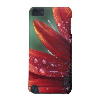Descensos rojos de los pétalos y de la lluvia del carcasa para iPod touch 5G