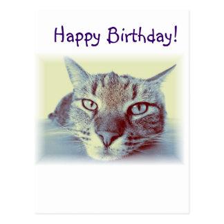 Deseos de la postal del saludo del gato de la tarj