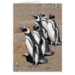 Deseos del feliz cumpleaños del pingüino tarjeta