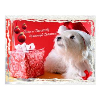 Deseos del navidad de Terrier blanco de montaña Postal