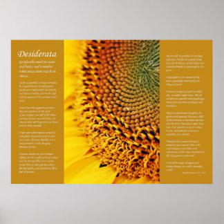 Desiderátums - semillas de girasol póster