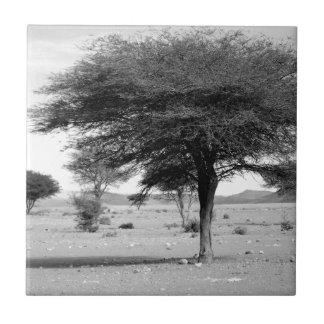 Desierto de B&W Marocco Azulejo Cuadrado Pequeño