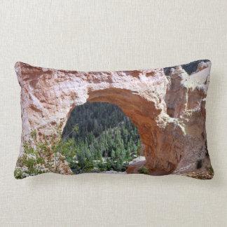 Desierto rojo del barranco del arco de la roca de cojín lumbar