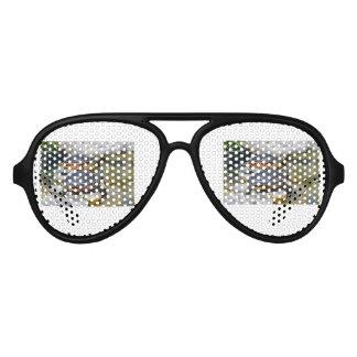 Destinos de encargo del destino de la oficina gafas de fiesta de aviador