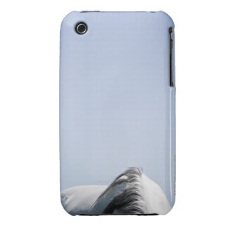 detalle del caballo blanco funda para iPhone 3